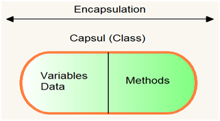 Concepts of Java, Encapsulation, Encapsulation with diagram, Encapsulation with real time example, Java, java concept, OOPs concept, OOPs concept of java